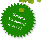 Gardens maintained for �25